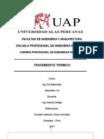 Informe Tratamientos Termicos Uap