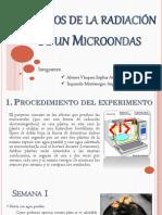 Efectos de La Radiación de Un Microondas (2)