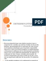 Determinantes Del Idh