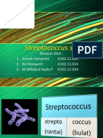 KEL 3 Streptococcus Sp