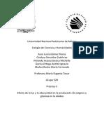 Práctica 3.3.Docx