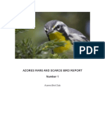 Azores Rare and Scarce Bird Report 2013