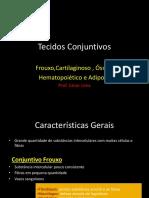 Tecidos Conjuntivos