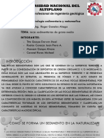 EXPOCISION sedimentaria.pptxfinal.pptx