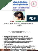 ZOONOSIS_DERMATOFITOSIS[1]