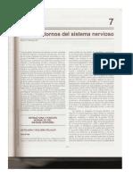 Cap 7 - Trastornos del Sistema Nervioso.pdf