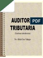 243750636-auditoria-tributaria-pdf.pdf
