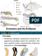Evolution and Its Evidence