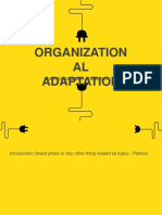 Organizational adaptation