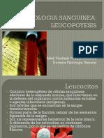 Clase 5 - Fisio Sanguinea Leucopoyesis