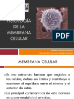 CLASE 2 - FISIO Membrana_Celular