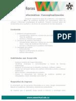 auditoria_informatica_conceptualizacion