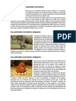 Como Nacen y Que Comen Los Animales Terrestres