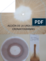 Cromas Urea y Herbicida