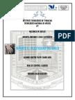 330112874-REPORTE-v-Plasticidad.docx