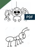 Araña, Hormiga y Caracol (Paciencia)