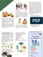 Triptico Actividad Fisica y Nutricion en Los Niños