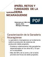 desempeno2cretosyoportunidadesdelaganadrianicaraguense-130830130032-phpapp02