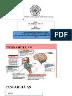 Mati Batang Otak Dan Herniasi Otak