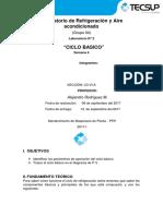 CICLO BÁSICO.docx