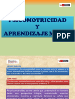 MOTRICIDAD ELEMENTOS.pptx