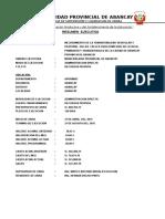 Resumen Ejecutivo Hiroito Junio 2015 Final