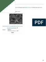 En.wikipedia.org Bacteria