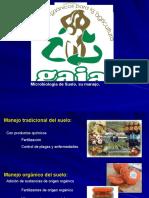 2-Manejo microbiologico,Micorrizas
