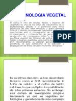 9 Biotecnologia Vegetal