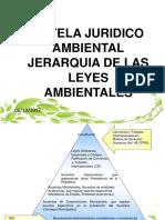 4.- Jerarquia de Las Leyes Ambientales Tutela Jurídico Ambiental.ppt