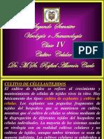 Clase 4 Virologia 2015 Cultivo Celular-e