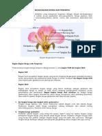 ARTIKEL Bagian Bunga Dan Fungsinya