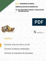 Ley de Corte, Balance Metalurgico, Evaluacion de Proyectos