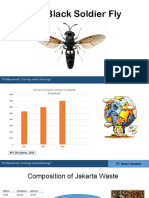 The Black Soldier Fly Project