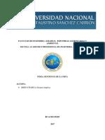SENTENCIA DERECHO.docx