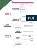 tema5mapadigestivo.pdf