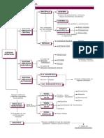 tema9mapanervioso.pdf