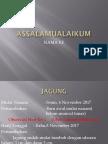 Kwu JAGUNG Kelompok 3 Achmad Adies