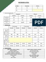 determinantes-y-pronombres.pdf