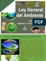 Ley-28611