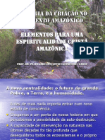 2006-08-15 v Enc Inter - Teologia Espiritualidade Criacao Contexto Amazonico