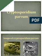 Cryptosporidium parvum