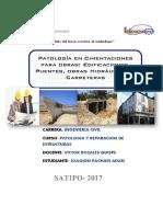 Monografia Patologias de Obras