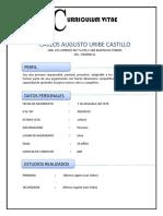 CURRICULUM VITAE1231.docx