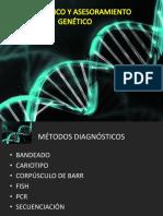 Diagnóstico y Asesoramiento Genético