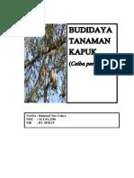 Budidaya Tanaman Kapuk
