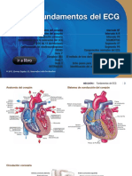FUNDAMENTOS DE L ECG - SECCION 1 - HUSZAR.pdf