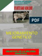 Mejoramiento Gentico Del Vacuno Lechero