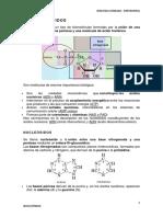 Biomoleculas - Nucleotido (f)