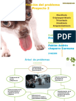 fabian-chaparro-2142289.pptx